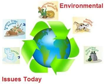 Environment and science essay